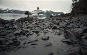 Imagen de la costa afectada por el vertido del Exxon Valdez